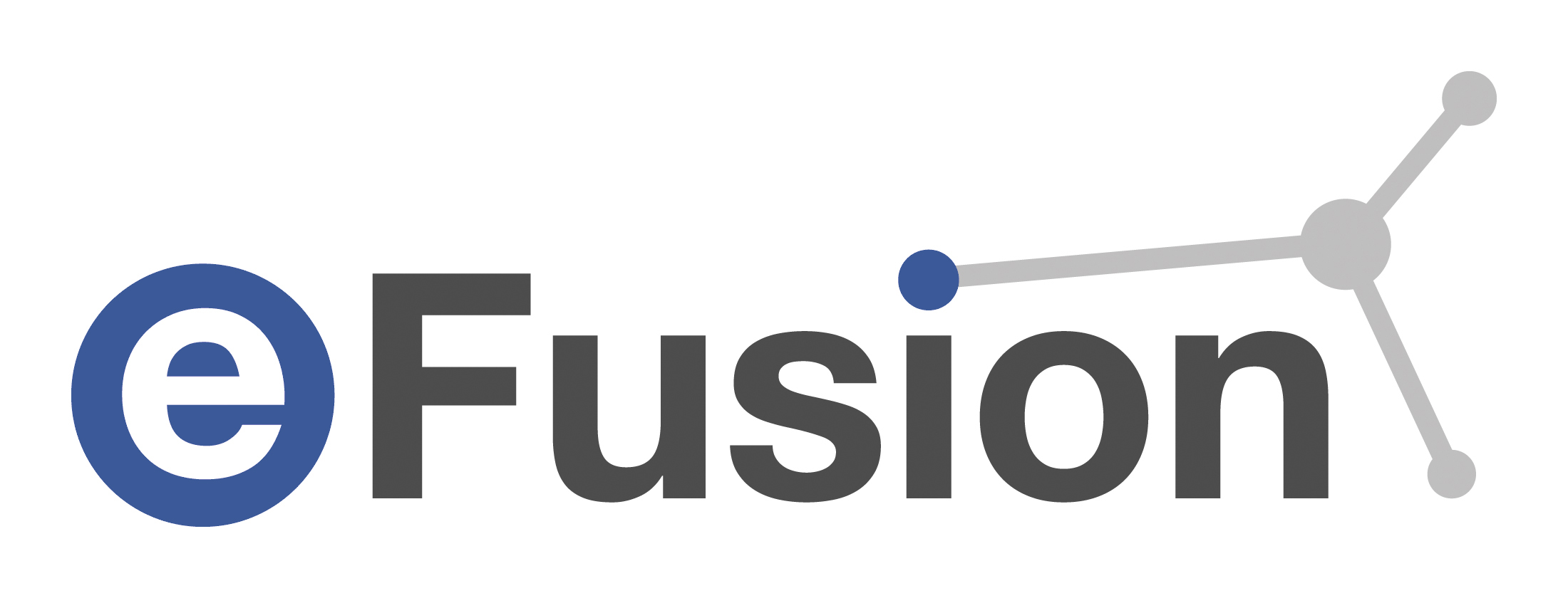 Maxxess eFusion security software logo